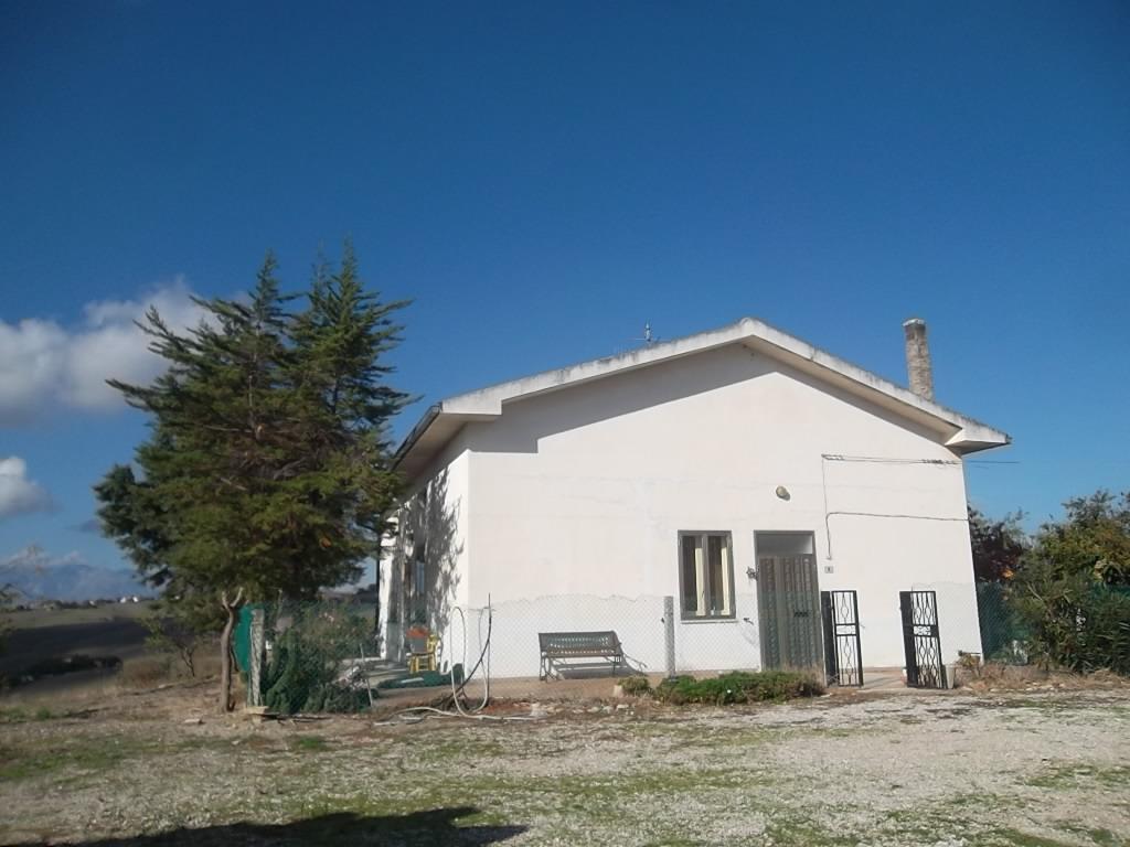 rif 987 – Gissi – Cottage con uliveto – € 100000