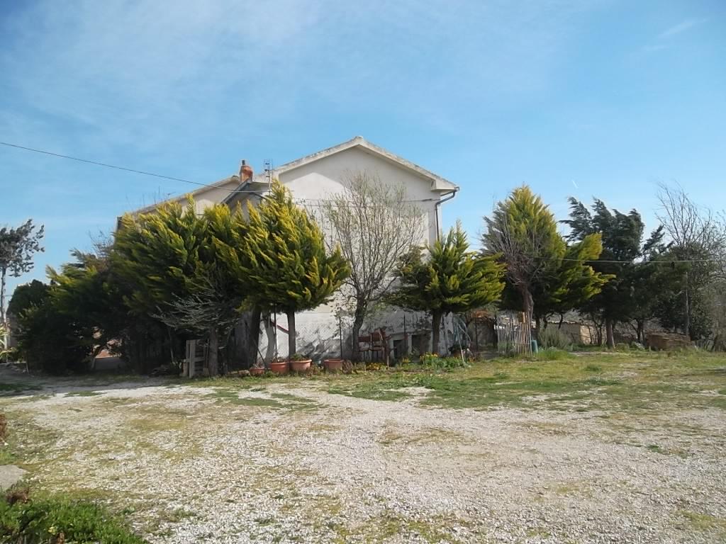 rif 987 – Gissi – Cottage con uliveto – € 120000