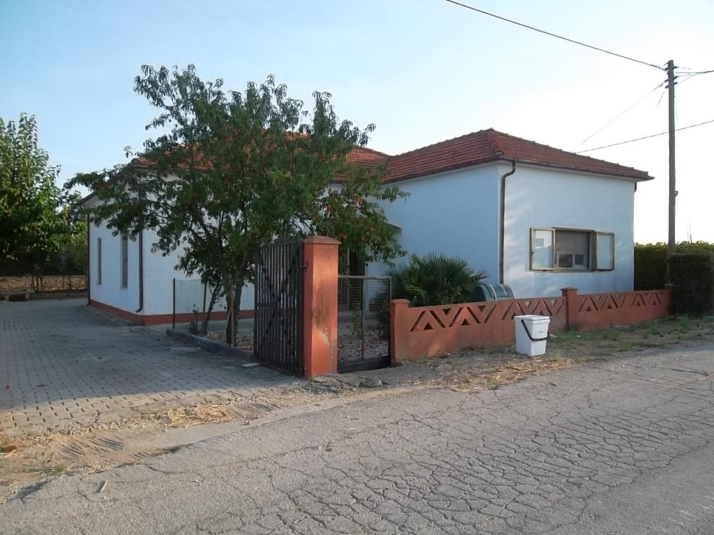 rif 1042 – Scerni – Cottage con giardino-