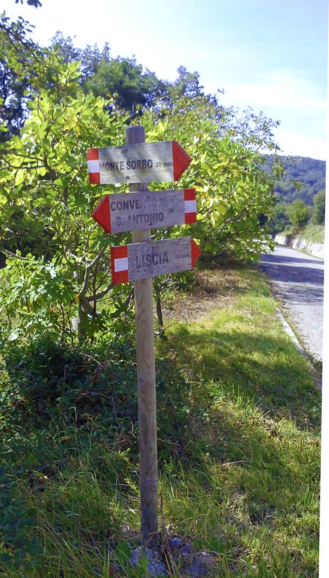 rif 1044 – Carpineto Sinello – Terreno agricolo – € 16.000