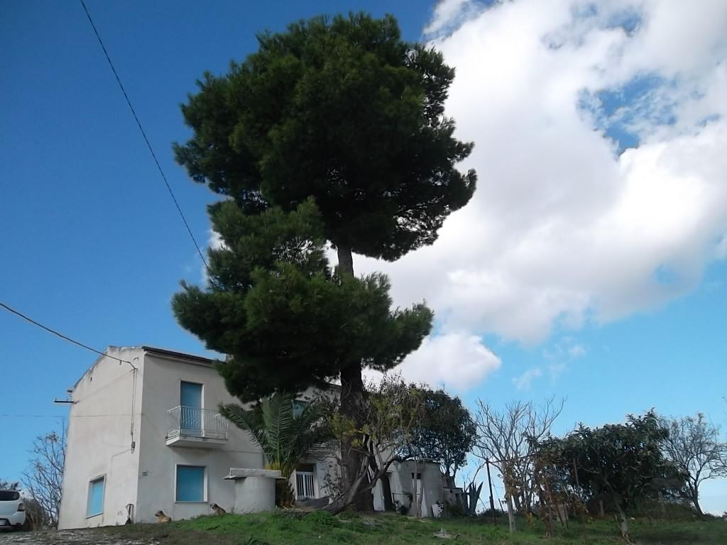 rif 1106 Gissi (CH) – Casolare e terreno, splendida vista panorama e mare – € 70.000