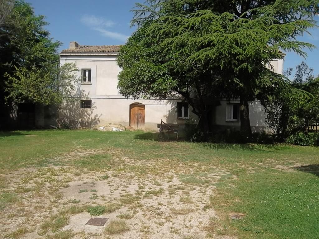 rif 1140 – Scerni (CH) –  Casale da ristrutturare con giardino e terreno edificabile – € 98000