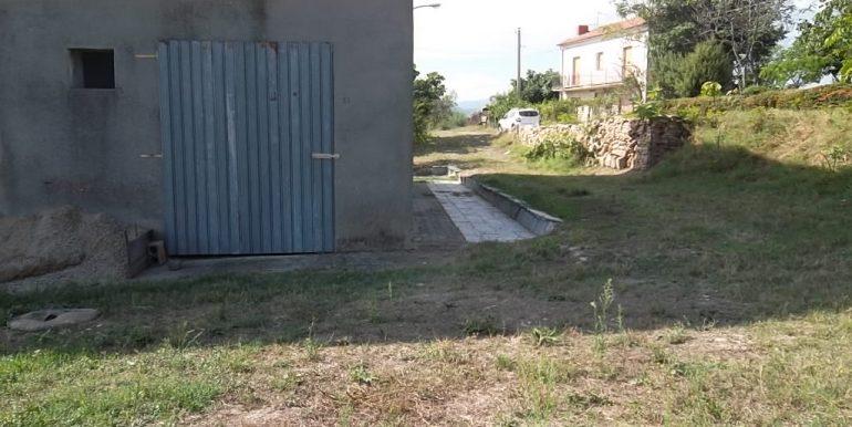 SAM_8207