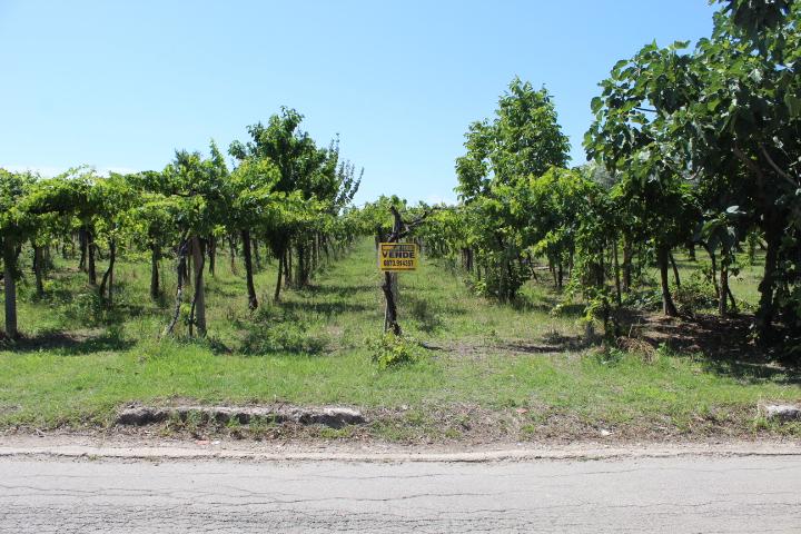 Rif 1203 Casalbordino – Terreno